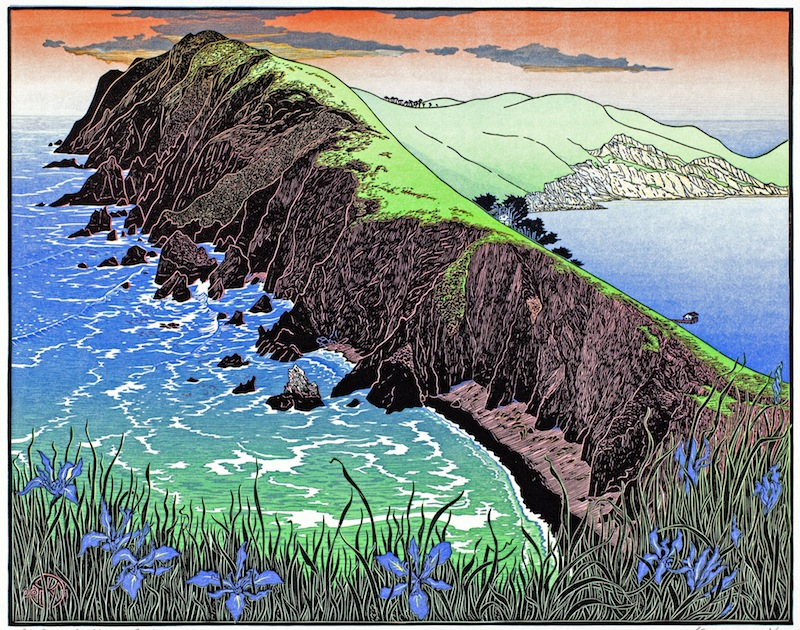 Tom Killion, Point Reyes from Chimney Rock, 2011