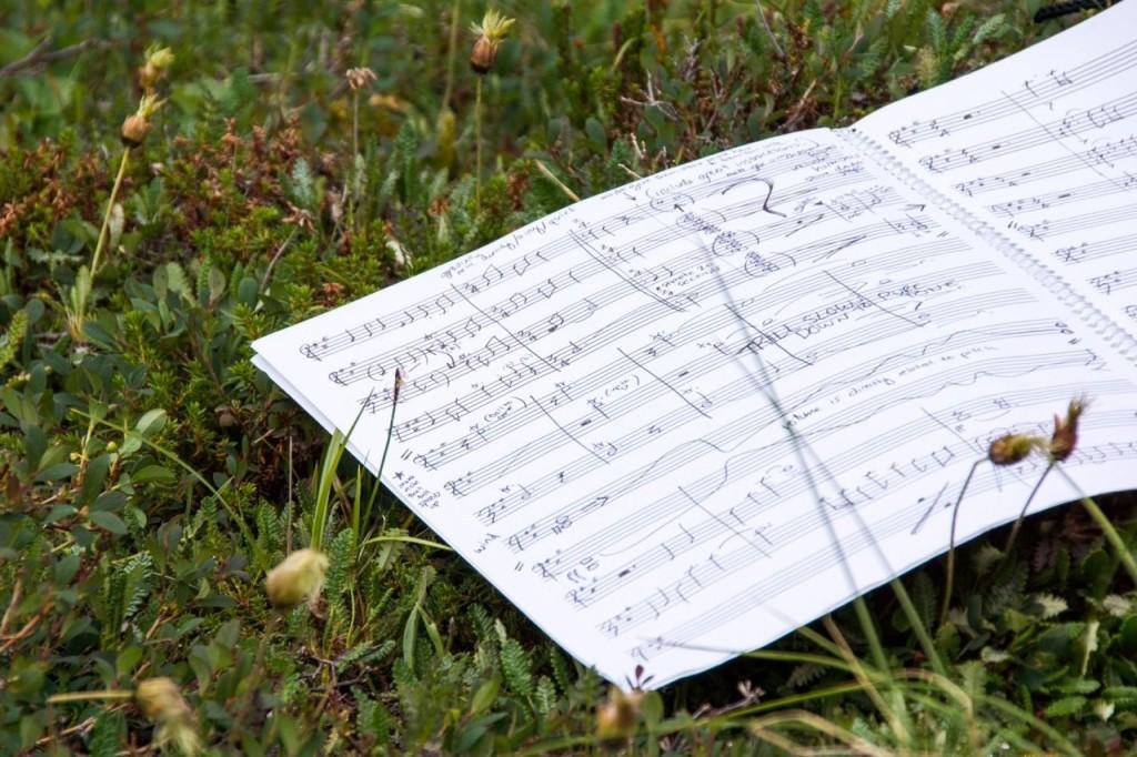 Composing in Denali