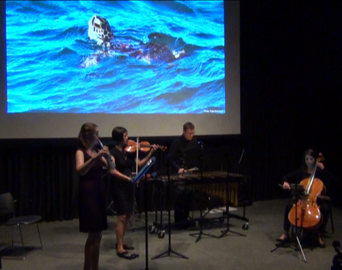 "Cadillac Moon Ensemble performs the World Premiere of ""Refuge"" by Nell Shaw Cohen, with video projection of the Kemp's ridley sea turtle."